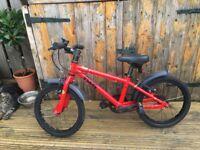 "Frog 48 (16"" Wheel) Kids Bike"
