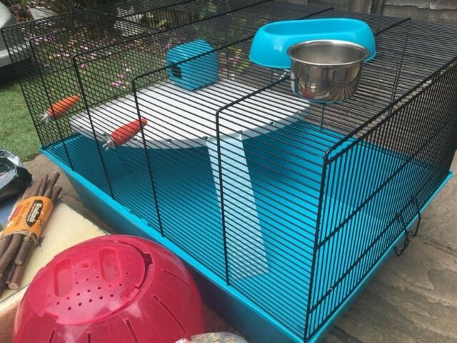 Hamster Cage Extra Large Pets At Home With Accessories In Richmond London Gumtree