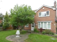 4 Bedroom Detached House in Wollaton (Available 1st May 2021)