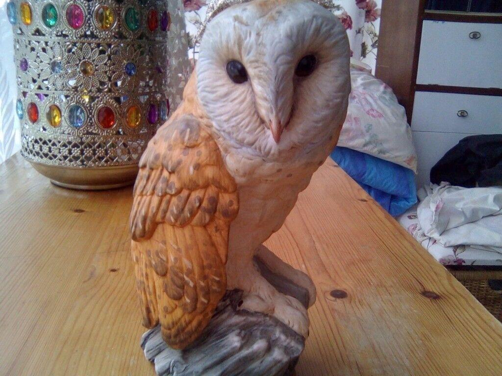 A lovely Leanardo Owl