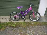 Raleigh Kraze Girls bike
