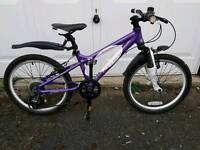 "6 - 9 yr girl 20"" mountain bike mint condition"