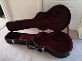 Babicz acoustic guitar hard case