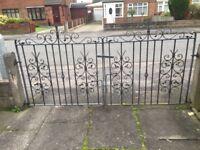 Galvanised garden gates