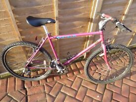Raleigh Apex retro mountain bike 1993 very good condition for age