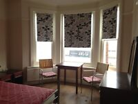 Spacious double room, twin room, Charminster for a single foreign student, bills included