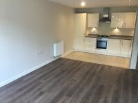 Luxurious 2 Bed First Floor Apartment | £1350