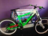 Downhill Bike