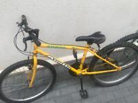Bike Jalapeño