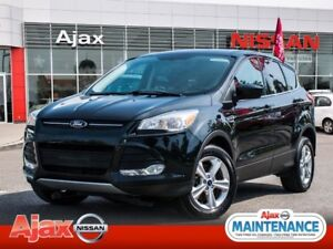 2013 Ford Escape SE*Accident Free*Great Shape