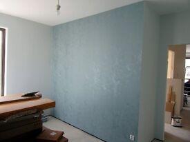 Painter, Decorator Handyman. good prices