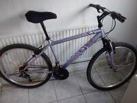 Womann's mountain bike.