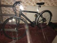 Specialized bicycle for sale