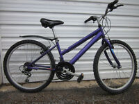 Small , young girls bicycle for sale . seat has scrape marks but it is safe ready to ride away .