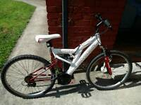 Mountian bike in great condition