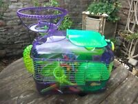 Deluxe hamster cage and toys