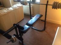 Pro Power Bench Press and Leg Extension