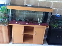 4 ft juwel fish tank 250l full set up with stand filter heater 1 light gravel ornament all in pic