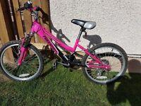 """Girls Freespirit Trendy 20"""" bike"""