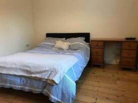 Double room in cosy 2 bed garden flat in Haringey