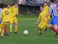 Vibrant, competitive football Merton FC Looking for Players - 11-a-side Friendly Football