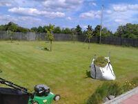 landscape gardening & Flagging