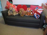 Ikea childrens sofa bed