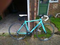 Trek road bikes (2)