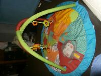Activity Centre and a play mat