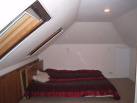 Double bedroom for single person in nicely decorated detached house in Chessington