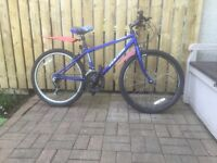 MOUNTAIN BIKE FOR SALE, SUIT OLDER CHILD OR SMALL ADULT.