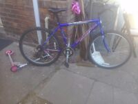 A mountain bike maker is freespirat hardly used been stored