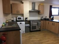 Room Available- Trinity Square Student Accommodation- Double Bed with Ensuite- £126.00 Per Week