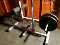 Bdy Solid calf rise bench with 45 kg weights