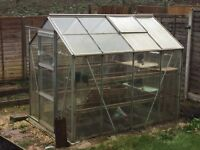 Greenhouse 5ft6 by 7ft6- Free to dismantle and take away. With internal shelving