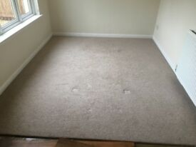 "Cream Carpet 9ft9""x8ft4"" & underlay."