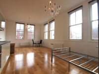 **BACK ON THE MARKET**Large & unique studio/1 bed flat with high ceilings*Archway & Finsbury Park*