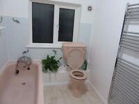 Retro Dusty pink bathroom suite