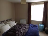 EXCLUSIVE ROOM TO RENT IN A QUALITY FLAT FURNISHED /INC BILLS SPACIOUS LOUNGE & KITCHEN CALL ME NOW