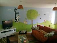 Mural art artist Rotherham and Barnsley