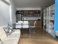 STUDIO APARTMENT in a brand new refurbished building.