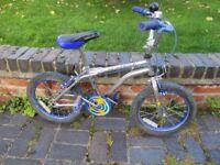 Child's Apollo Stuntking 12inch Wheel Bike