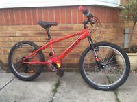 """Children's 20"""" bike"""