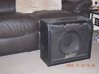 Guitar & Amp For Sale