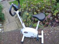 Body Sculpture exercise bike