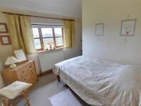 Immaculate Double Room to Rent in Shared House , Charshalton.