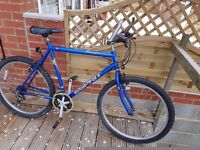 Gents Concept Espirit Road Cycle in good condition