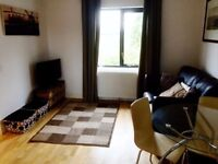 One Bedroom Furnished Flat For Rent, Basingstoke near to shopping centre,railway station,Basing View