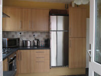 Kitchen Units (includes oven and Hob and extractor)