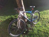 Gt Avalanche 1.0 moutian bike